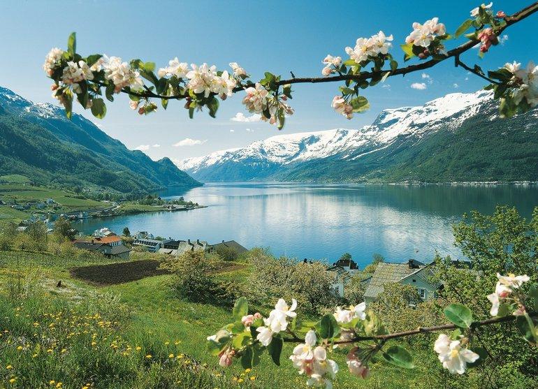 fecha de lanzamiento fuerte embalaje información para Navega por el entorno mágico de los Fiordos Noruegos en ...